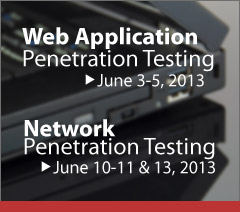 web application penetration testing network penetration testing